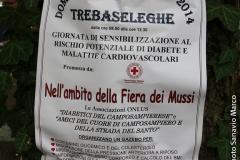 "Fiera dei ""mussi"" 2014"