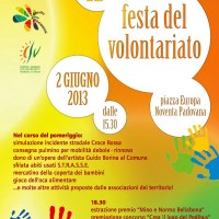 Festa del Volontariato Noventa 2013